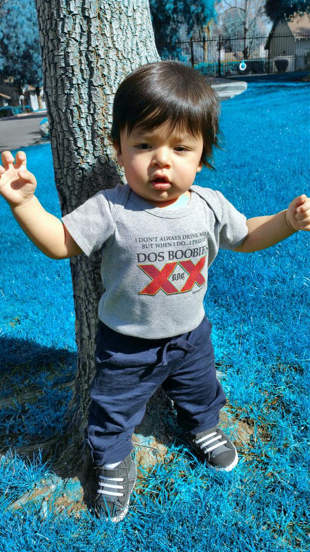 #spring #stick #myboy #myworld #babyboy #baby #growing #outside #stick #drseuss #grover #seasemestreet #Dodgers #bluecrew #standing #ladodgers #losangelesdodgers #larams #losangelesrams