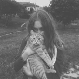 cute cat mynewlove loyo