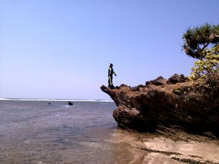 sea nature photography