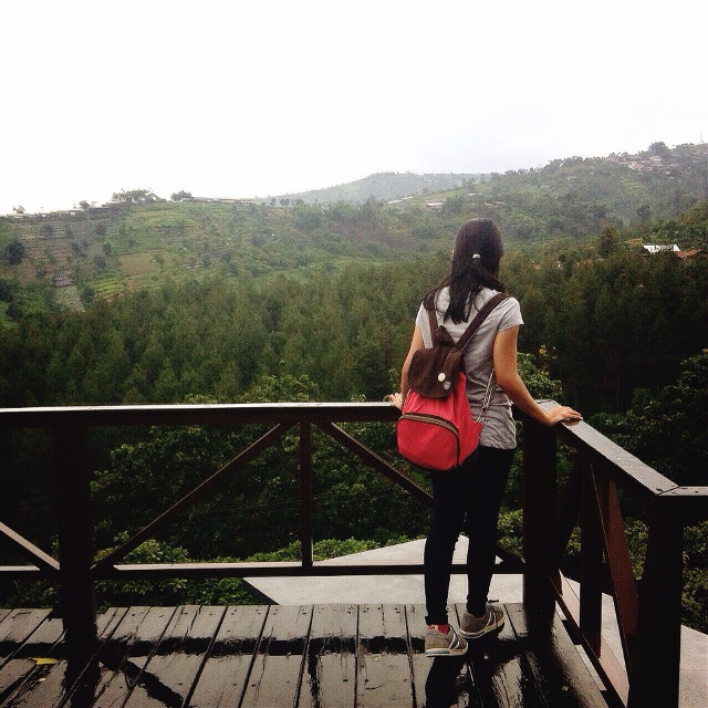 「HIGH」  #high  #top  #nature  #green  #art  #interesting  #me  #kezioo #freetoedit