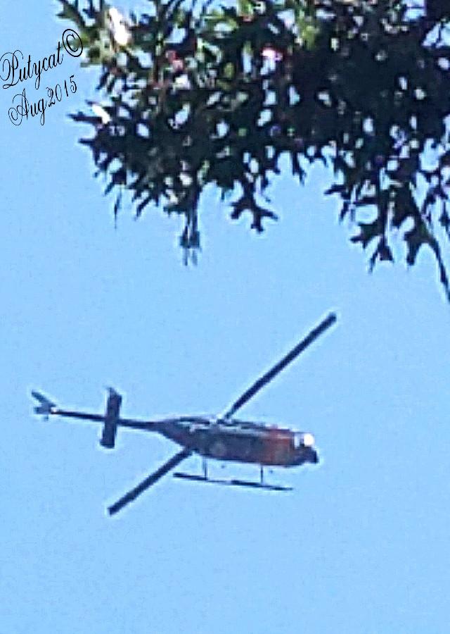 #hellecopter #skyporn  #skysofpicsart  #randomshot #summer #photography
