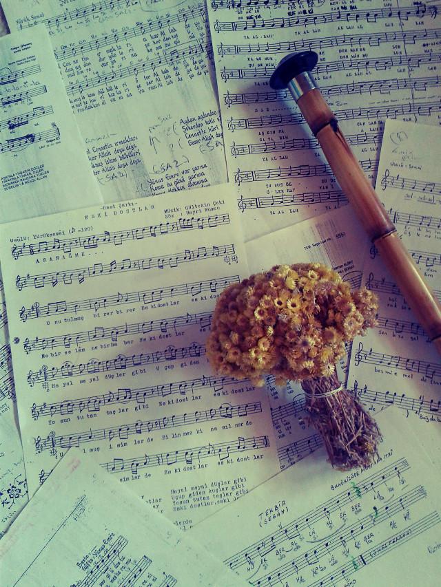 #music #emotions #holga #love #nature #oldphoto #photography #popart #sepia