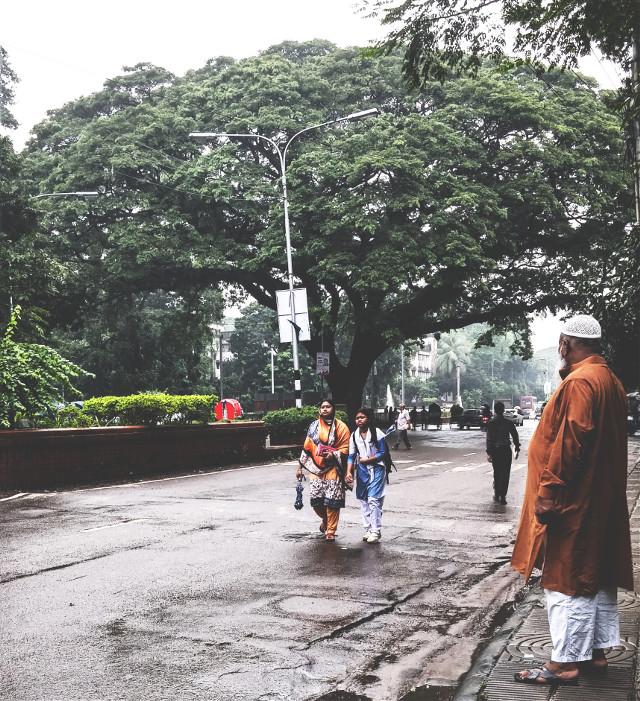 Dhaka University in the Rain....