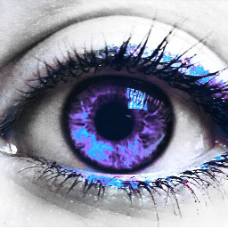 eye me purple gdaddcolor