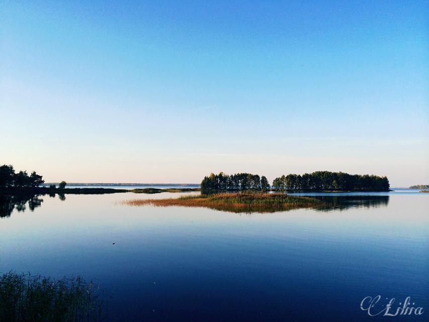 #freetoedit  #autumn  #nature   #desaturated
