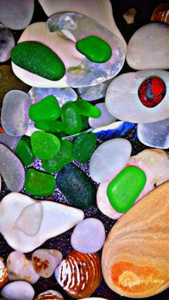 wapflatlay seaglass treasures nature ocean