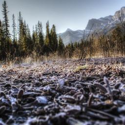 photography nature landscape canada alberta